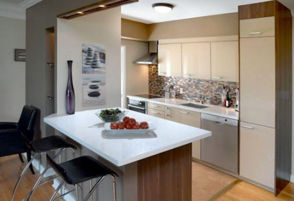 Renovating  kitchen  (3)