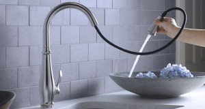 beautiful kitchen faucet   (3)