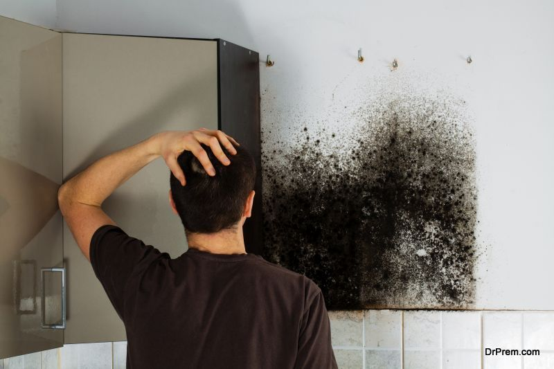 mold in your own home