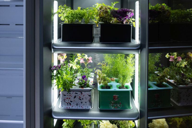 Samsung's Bespoke Grow system